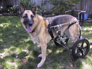 27_轮椅