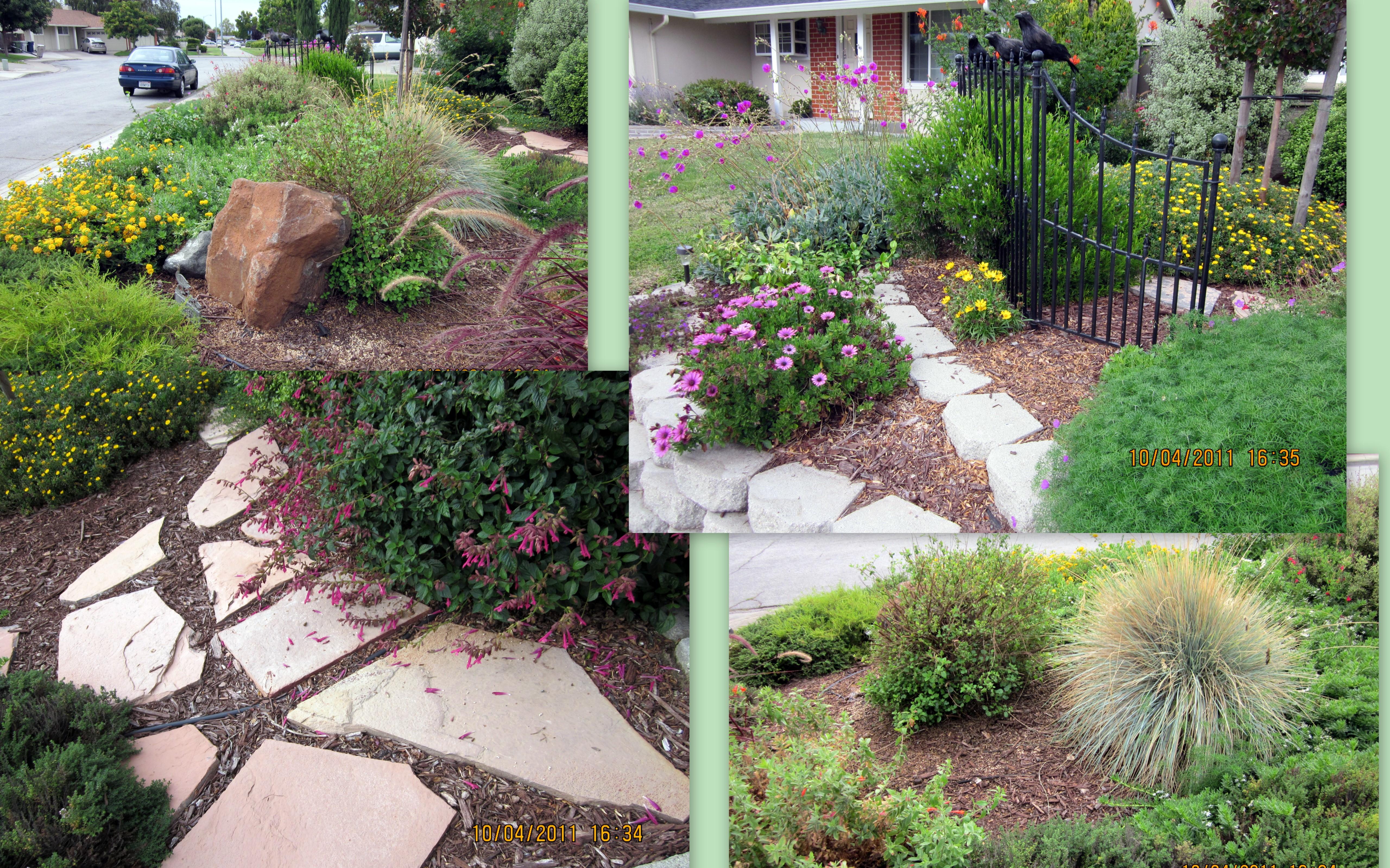 邻居的花园