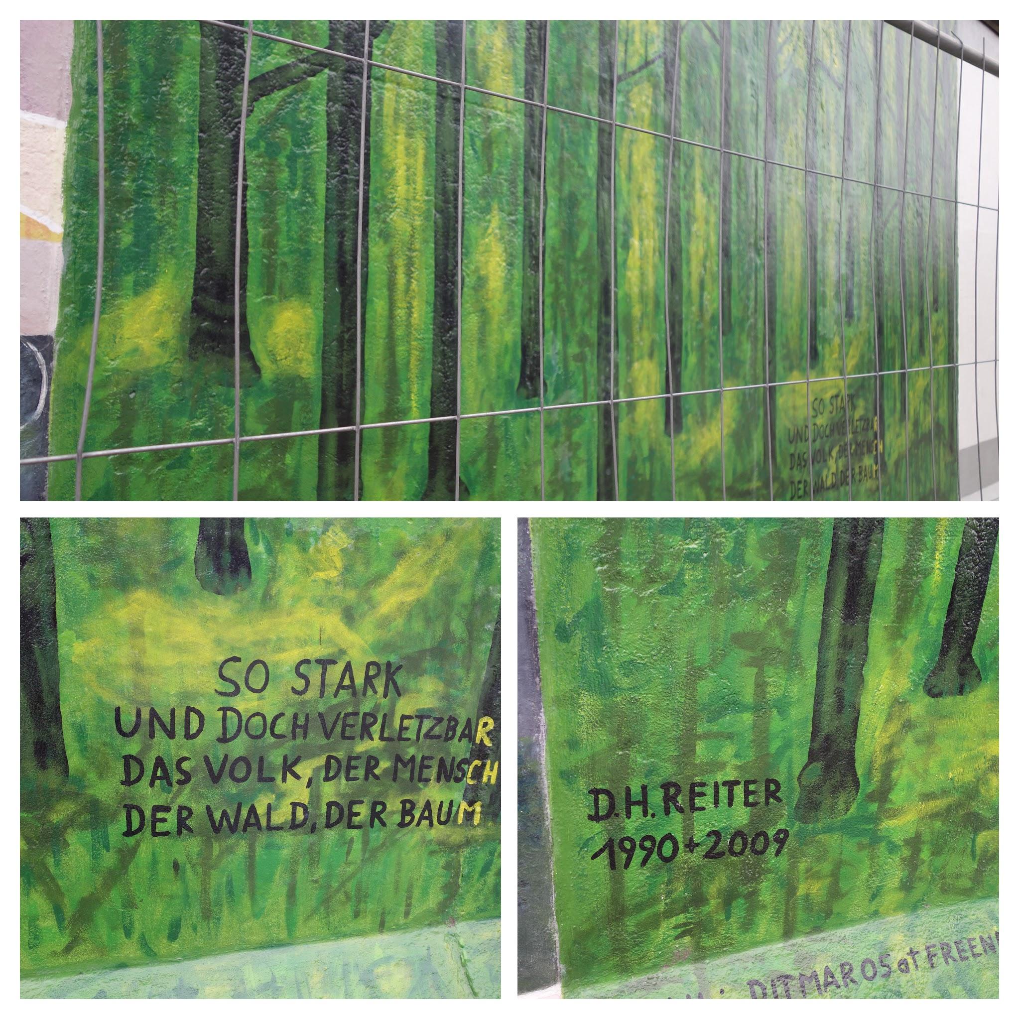 树林-COLLAGE